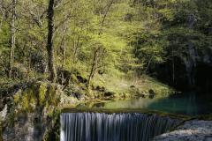 krupajsko-vrelo-14