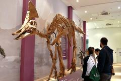 dinosaurus-2