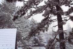 zlatibor-zima-10